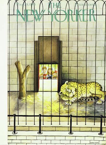 Male Lion Photograph - New Yorker Magazine Cover Of A Leopard Sleeping by Edna Eicke