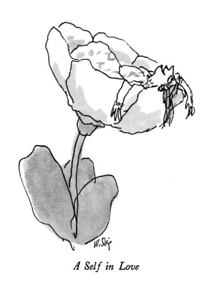 Flower Drawing - New Yorker March 9th, 1992 by William Steig