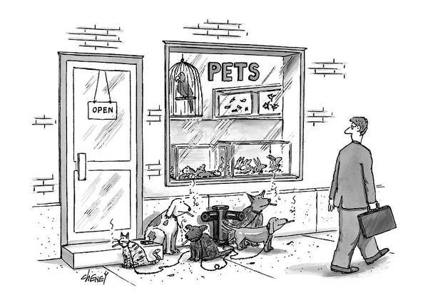 Pet Store Drawing - New Yorker May 12th, 1997 by Tom Cheney