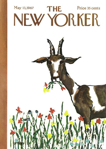 Flower Painting - New Yorker May 13th, 1967 by Warren Miller