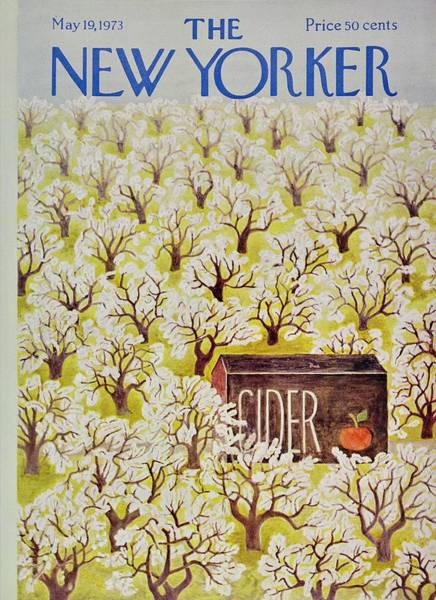 Apples Painting - New Yorker May 19th 1973 by Ilonka Karasz