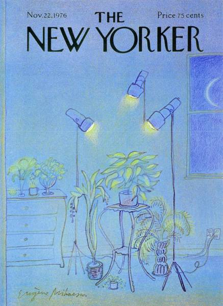 New Yorker November 22nd 1976 Art Print by Eugene Mihaesco
