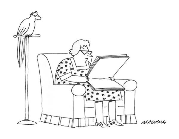 Parrot Drawing - New Yorker November 3rd, 1986 by Mick Stevens