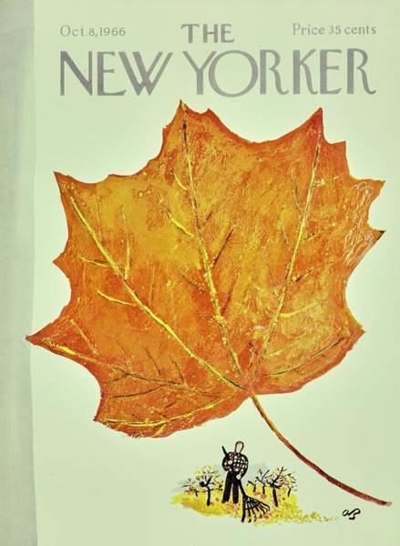 Rake Painting - New Yorker October 8th 1966 by Aaron Birnbaum