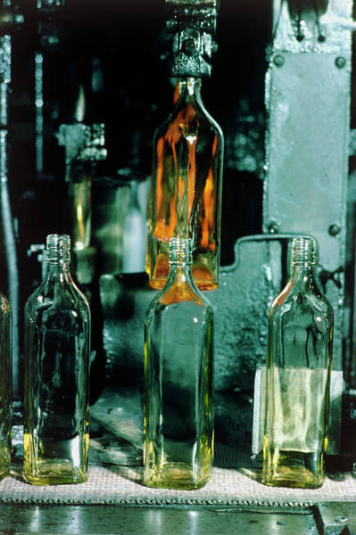 Manufacture Wall Art - Photograph - Newly-made Glass Bottles by Heini Schneebeli/science Photo Library.