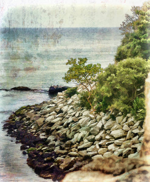Newport Cliff Walk Art Print
