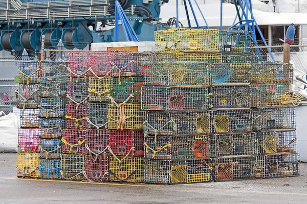 Crab Photograph - Newport Rhode Island Traps by Betsy Knapp