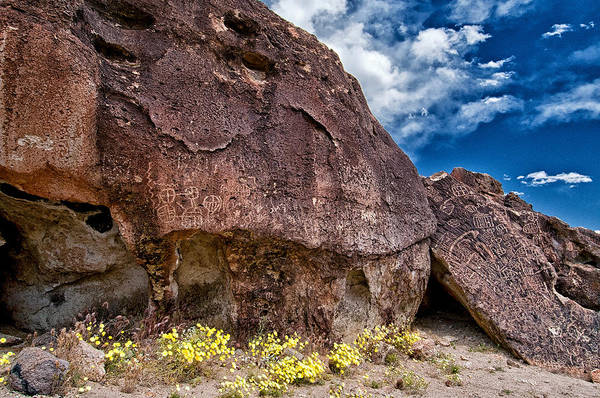 Petroglyph Photograph - Newspaper Rock by Cat Connor
