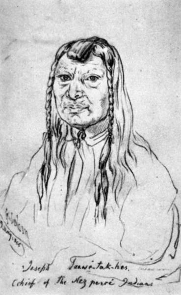 1854 Drawing - Nez Perce Old Joseph by Granger