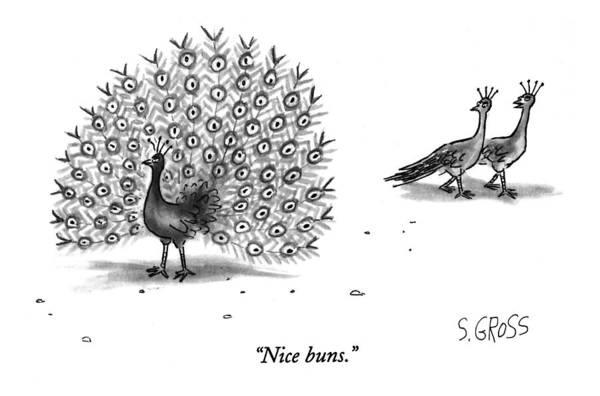 Peacock Drawing - Nice Buns by Sam Gross