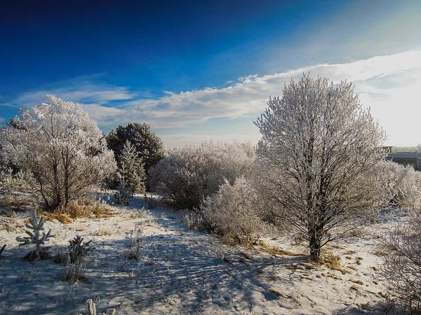 Wall Art - Photograph - Nice Winter by Milan Cernak