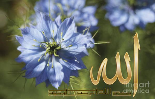 Love In The Mist Photograph - Nigella Damasceena With Allah And Basmallah Calligraphy by Circles Of Beauty Dawair Al Jameelah