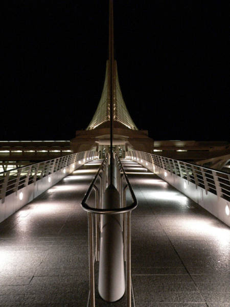 Milwaukee Art Museum Photograph - Night At The Museum by David Bearden