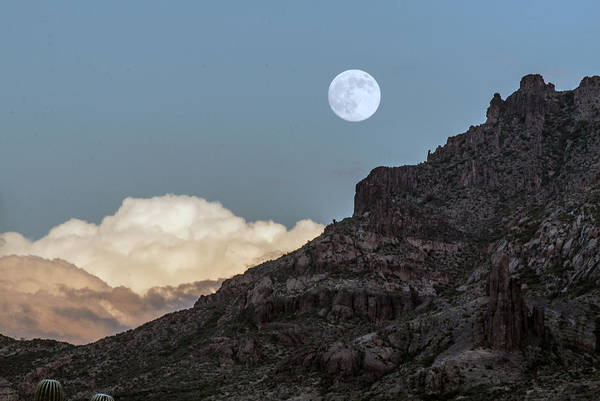 Photograph - Night Before Super Moon by Tam Ryan