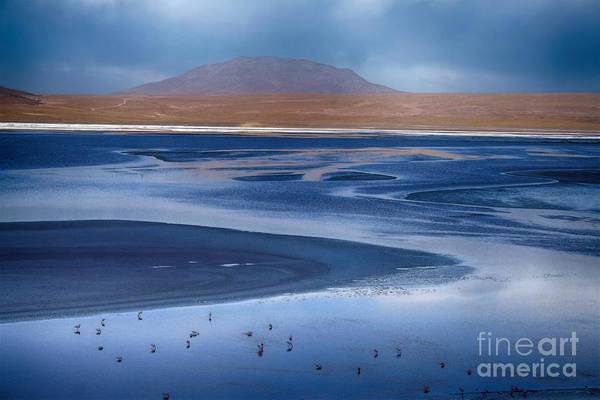 Photograph - Laguna Colorada - Night Blue by Karla Weber
