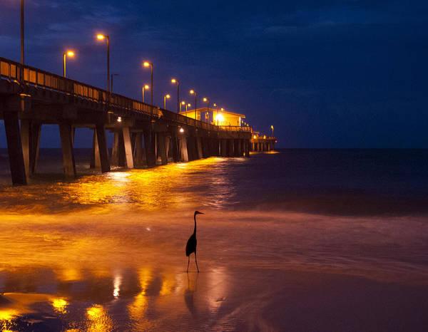 Digital Art - Night Fishing In The Surf by Michael Thomas