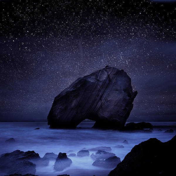 Wall Art - Photograph - Night Guardian by Jorge Maia