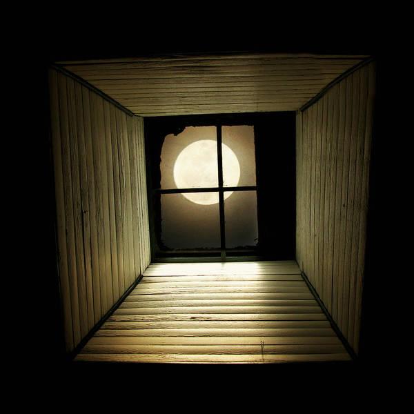 Moon Light Photograph - Night Light by Amy Tyler