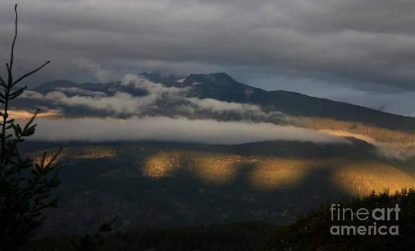 Wall Art - Photograph - Night On Cougar Mountain Series Vii by Amanda Holmes Tzafrir