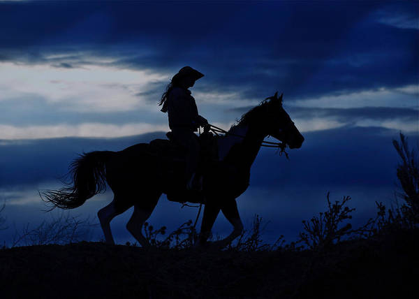 Photograph - Night Rider  by Pamela Steege