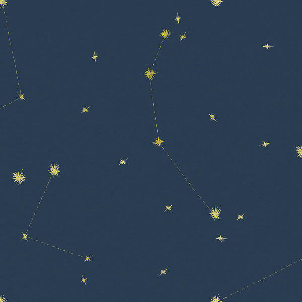 Constellation Painting - Night Sky Navy And Gold Pattern 05ajpg by Sara Zieve Miller