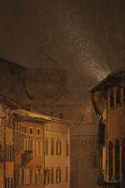 Photograph - Night Snowfall by Raffaella Lunelli