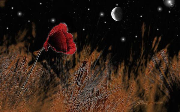 Photograph - Nightime Harvest Moon by Ericamaxine Price