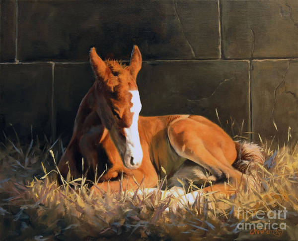 Quarter Horse Painting - Nightlight by Jeanne Newton Schoborg