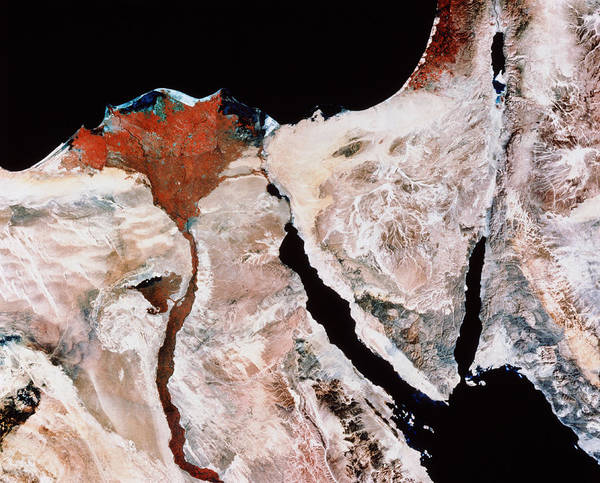 River Delta Photograph - Nile Delta And Sinai Peninsula From Space by Mda Information Systems/science Photo Library