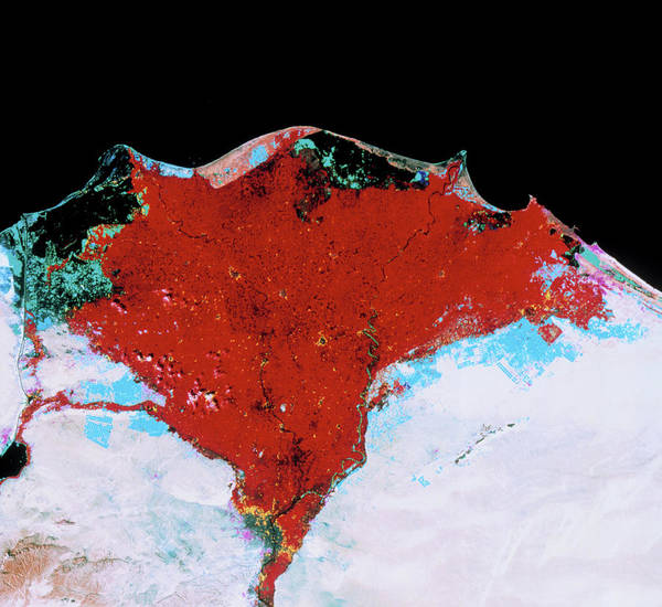 River Delta Photograph - Nile Delta by Mda Information Systems/science Photo Library