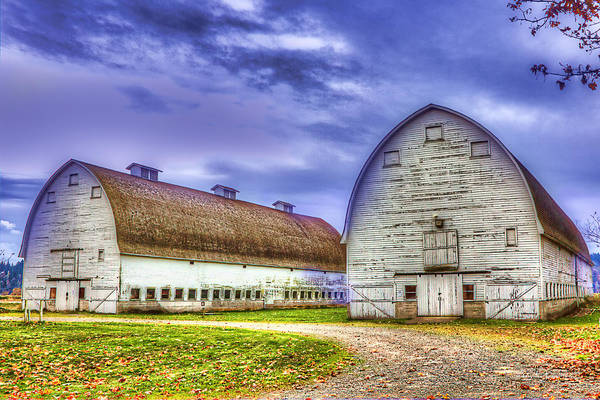Photograph - Nisqually Twin Barns by Barry Jones
