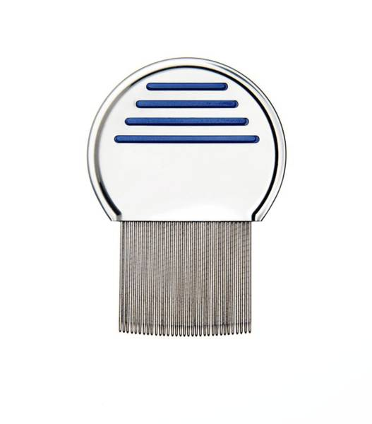 Hair Cuts Wall Art - Photograph - Nit Comb For Removing Headlice From Hair by Cordelia Molloy