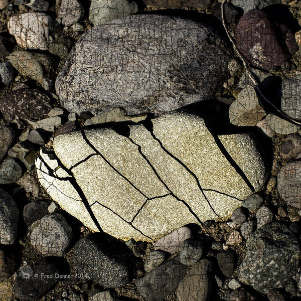 Photograph - Nizina River Rock 1 by Fred Denner