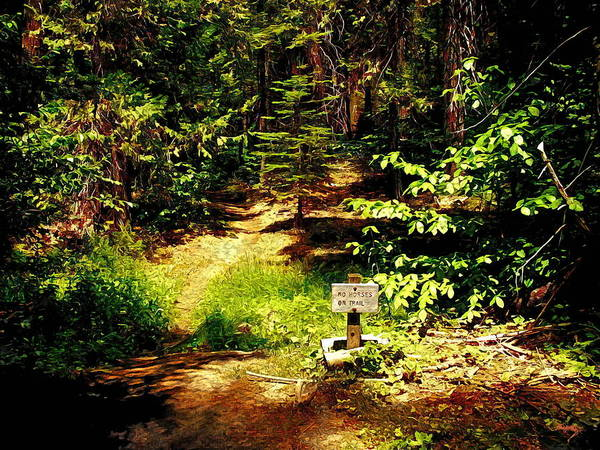 Photograph - No Horses On Trail by Glenn McCarthy Art and Photography