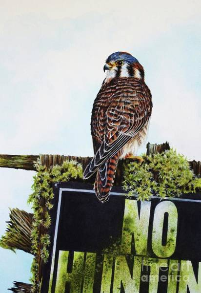 Painting - No Hunting by Greg and Linda Halom