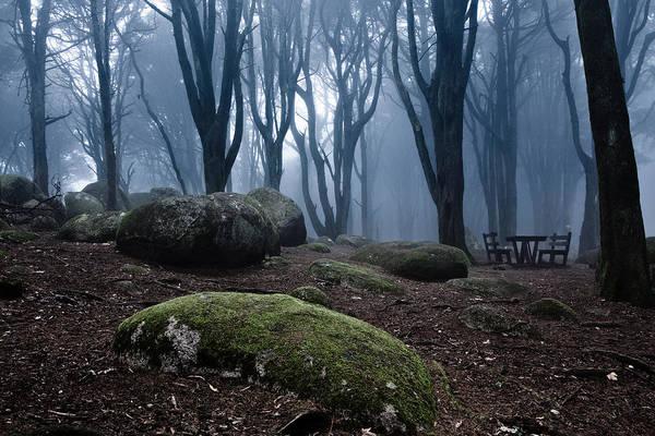 Sintra Photograph - No One by Jorge Maia