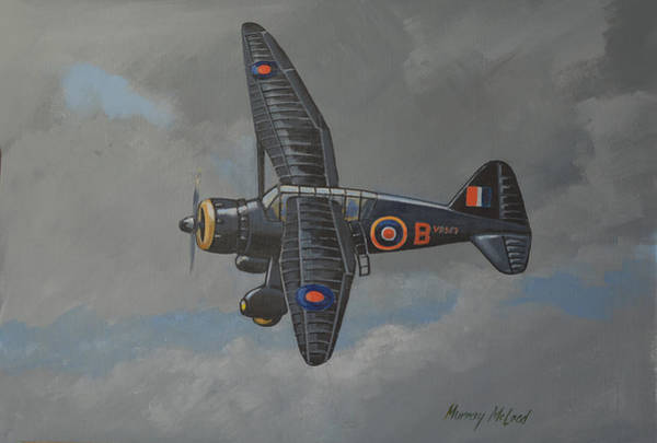 Painting - Nocturnal Lysander by Murray McLeod
