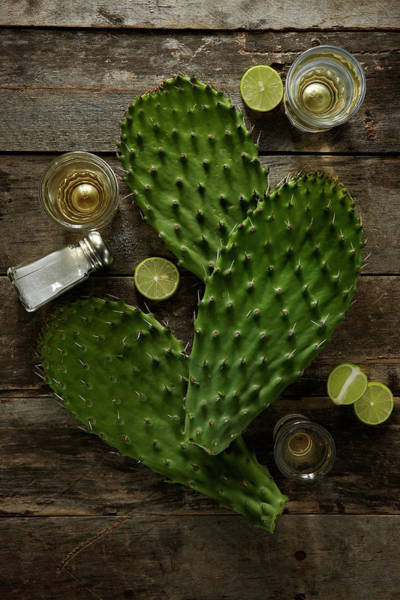 Prickly Pear Photograph - Nopales And Tequila by Lew Robertson