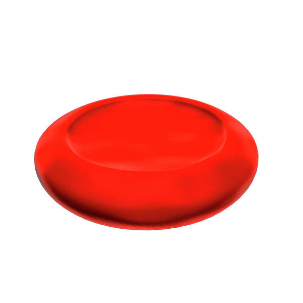 Rbcs Wall Art - Photograph - Normal Red Blood Cell by Harvinder Singh