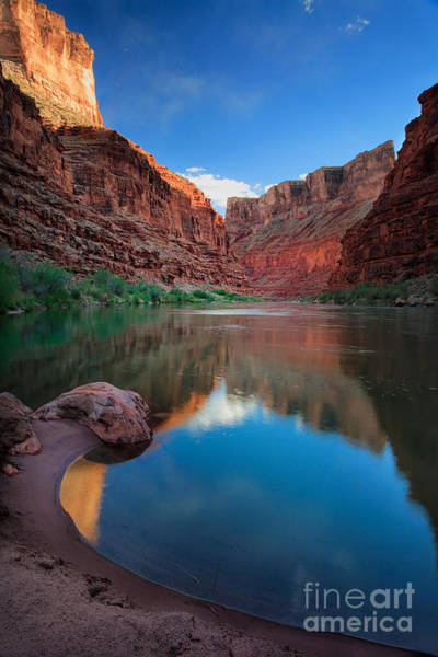 Photograph - North Canyon Number 1 by Inge Johnsson