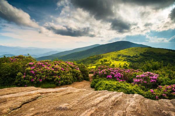 Wall Art - Photograph - North Carolina Blue Ridge Mountains Landscape Appalachian Trail by Dave Allen