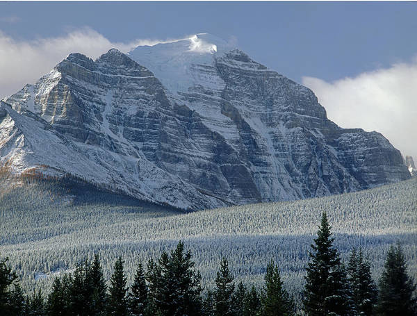 Photograph - 1m3546-north Face Mount Temple Fresh Snow by Ed  Cooper Photography