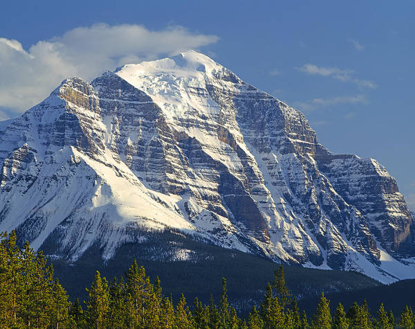 Photograph - 1m3549-north Face Of Mt. Temple by Ed  Cooper Photography