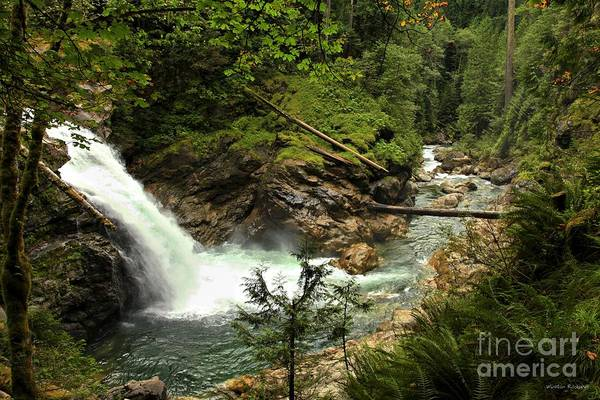 Wall Art - Photograph - North Fork Falls by Winston Rockwell