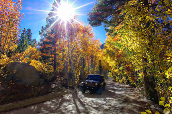 Bishop Photograph - North Lake Road Fall Color Jeep by Scott McGuire