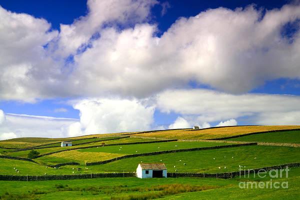 North Pennines Barns In Landscape Art Print
