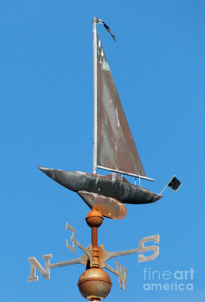 Sailing Terms Photograph - North South by Skip Willits
