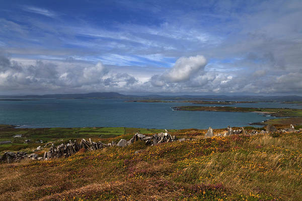 Moorland Photograph - North Westerly View by Panoramic Images