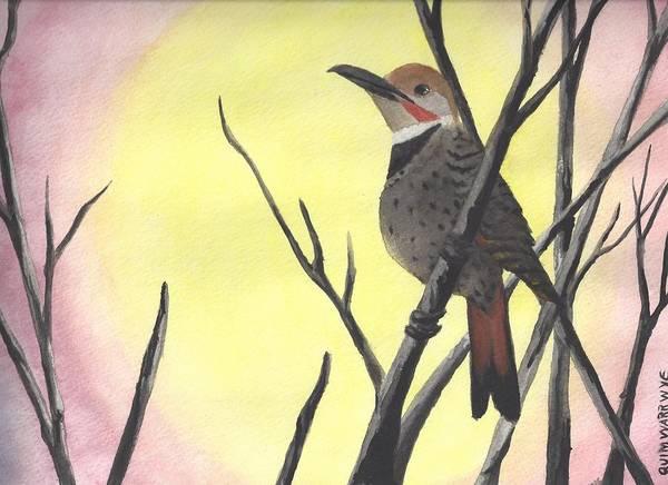 Northern Flicker Painting - Northern Flicker At Dusk by Barbara Quimwarrwye