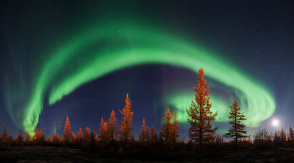 Wall Art - Photograph - Northern Lights by Andrey Snegirev